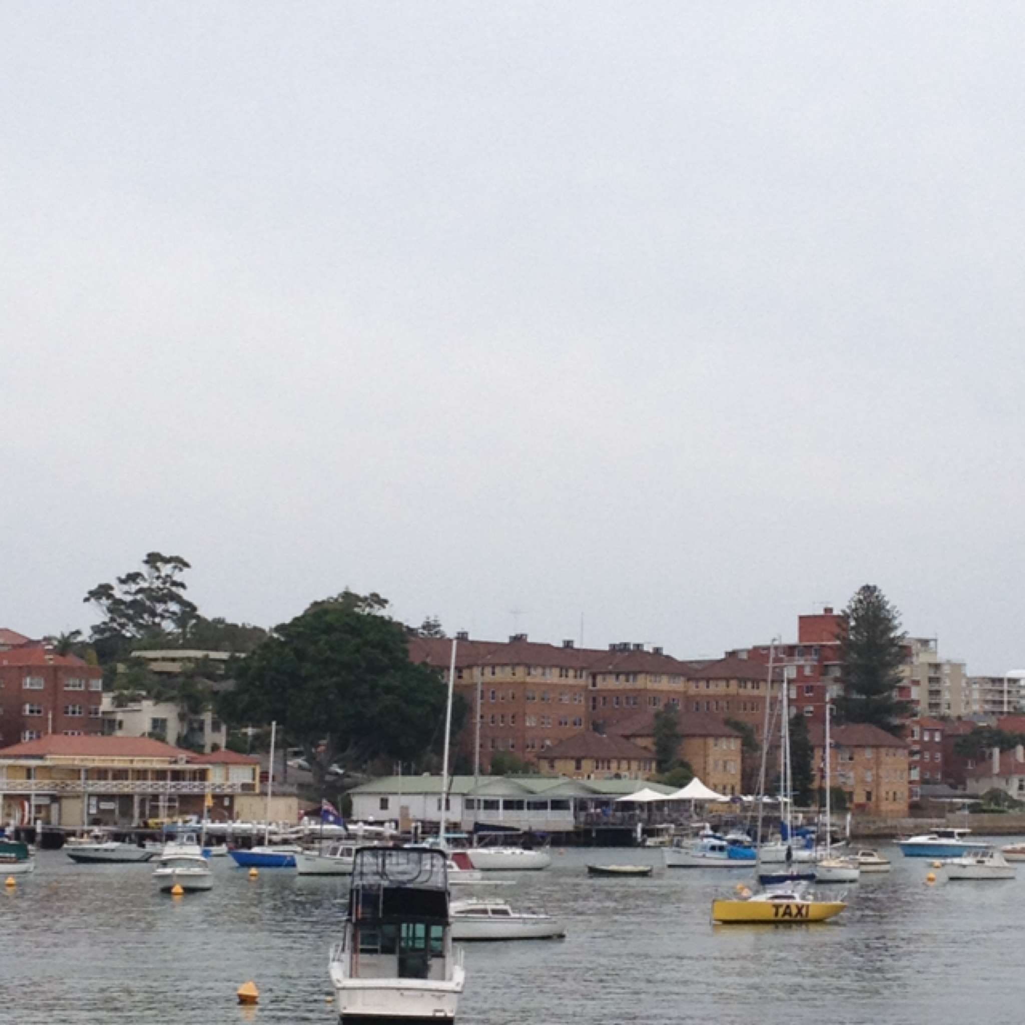 Manly Wharf Bar